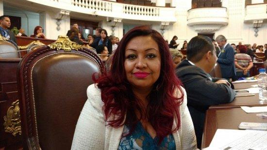 Ofrece diputada del PRD pagar consulta ciudadana en la Cuauhtémoc