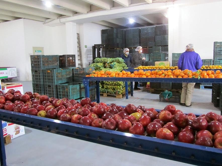 Dona CEDA 370 toneladas de alimentos