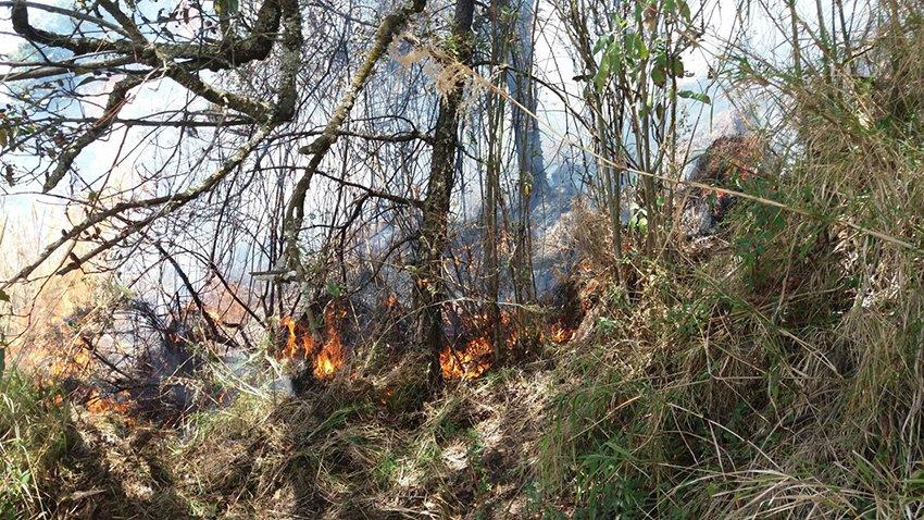 Urge estacion de combate a incendios forestales